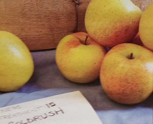 Goldrush cider apple