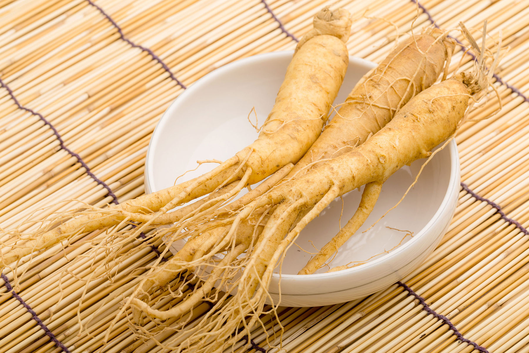 Ginseng photo by Rainey Ginseng