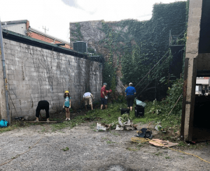 Back Alley Cleanup